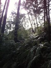 空木マイカ 画像1