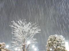 上野あいみ(すっとんきょ) 公式ブログ/おい!なんだいこの雪は! 画像2
