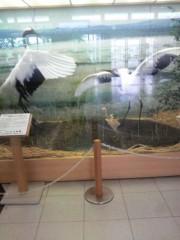 ゴジーラ久山 公式ブログ/釧路空港で一人。 画像2