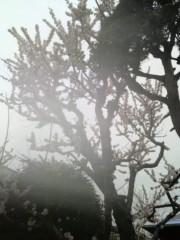 ゴジーラ久山 公式ブログ/宮城県古川。 画像2