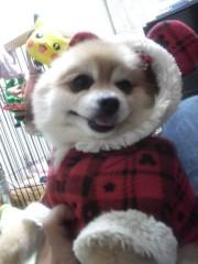 ゴジーラ久山 公式ブログ/クリスマスバージョン 画像1