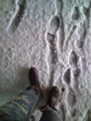 佐藤峻 公式ブログ/雪のイタズラ。 画像1