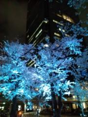 佐藤峻 公式ブログ/夜桜満開 画像3