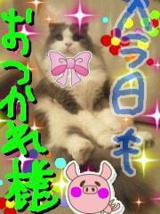 金子トモ 公式ブログ/にゃぁお♪ 画像1