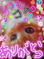 金子トモ 公式ブログ/おはようござぁいます(* ´∇`*) 画像1