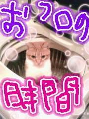 金子トモ 公式ブログ/たぁだいまっ(  ´∀`)/ 画像2