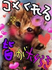 金子トモ 公式ブログ/タピオカミルクティー♪ 画像1