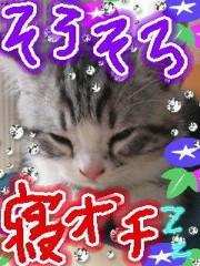 金子トモ 公式ブログ/ネムネム(  p_q) 画像2
