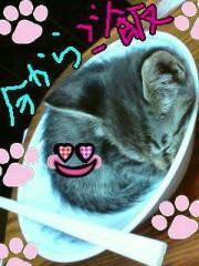 金子トモ 公式ブログ/お昼の時間が! 画像2