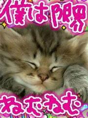 金子トモ 公式ブログ/今日もまた…2 画像2