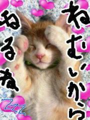金子トモ 公式ブログ/眠気MAX(  p_q) 画像2