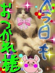金子トモ 公式ブログ/ただいまぁ(* ´∇`*) 画像3