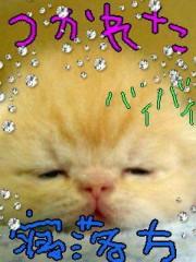 金子トモ 公式ブログ/でわでわ!! 画像3