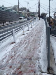 HaRuHi 公式ブログ/大雪到来 画像1
