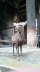 岡元あつこ 公式ブログ/奈良だけに 画像1