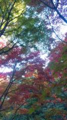 岡元あつこ 公式ブログ/紅葉探し 画像1