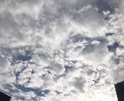 荒美由紀 公式ブログ/夏空 画像1