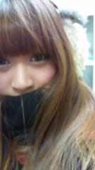 神谷にこ(ポンバシwktkメイツ) 公式ブログ/はろにゅ(^o^) 画像1