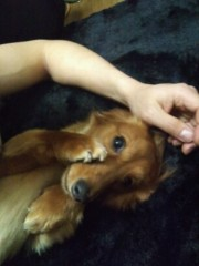 KAZ 公式ブログ/【友達キャンペーン中!】ただいま〜 画像2