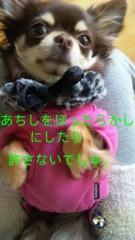 篠原真衣 公式ブログ/ほったらかし〜 画像2