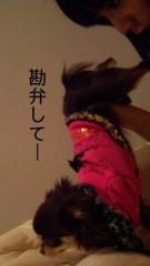 篠原真衣 公式ブログ/お尻スキンシップ 画像3