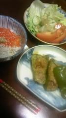 相田翔子 公式ブログ/『いくらしらす丼』 画像1