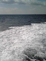 相田翔子 公式ブログ/『沖縄でハイタイ!』 画像1