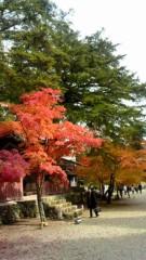 相田翔子 公式ブログ/『京都の紅葉』 画像1