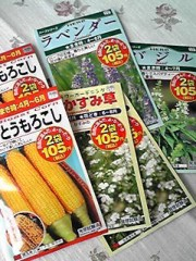 相田翔子 公式ブログ/『種』 画像1