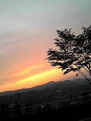 相田翔子 公式ブログ/『早起きのご褒美』 画像3