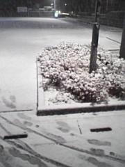 ししとう 公式ブログ/雪が降った! 画像1
