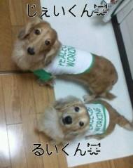 渋木美沙 公式ブログ/☆またーり☆ 画像2