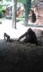 赤坂直人 公式ブログ/上野動物園 画像1