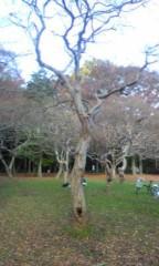 赤坂直人 公式ブログ/散歩 画像1