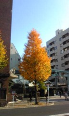 赤坂直人 公式ブログ/紅葉 画像1