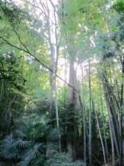 城所葵 公式ブログ/朝から癒やされてます♪ 画像3