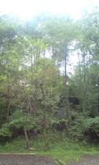 ほんまかよこ 公式ブログ/緑がおいしい季節だね。 画像1