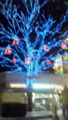 音羽七美 プライベート画像/世の中はクリスマス どこだかの