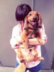 """©東京ニューアライバル / 看板犬""""くう"""" 公式ブログ/ご無沙汰だワン♪ 画像1"""