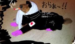 """©東京ニューアライバル / 看板犬""""くう"""" 公式ブログ/誰だってあるよな? 画像1"""