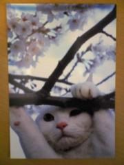 大友典子 公式ブログ/癒し…(^_^) 画像2