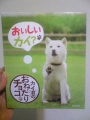 大友典子 公式ブログ/お父さんチョコ 画像2