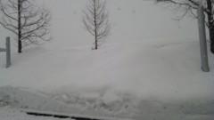 アントニオ小猪木 公式ブログ/雪は積もる… 画像1