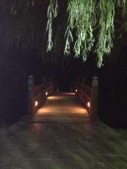 アントニオ小猪木 公式ブログ/暗い柳の橋の向こうは… 画像1