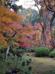 アントニオ小猪木 公式ブログ/喜多院の赤い橋 画像1