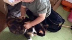 アントニオ小猪木 公式ブログ/1才児が猫を捕らえた!? 画像1