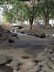 アントニオ小猪木 公式ブログ/芝公園の池 画像1