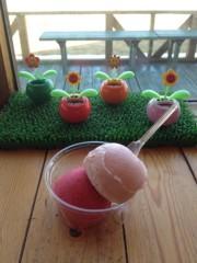 アントニオ小猪木 公式ブログ/北海道でシャーベット 画像1