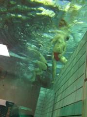 アントニオ小猪木 公式ブログ/水中でマイク持ってダァー 画像1