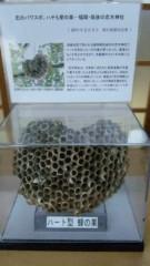 アントニオ小猪木 公式ブログ/ハート型の蜂の巣展示 画像1